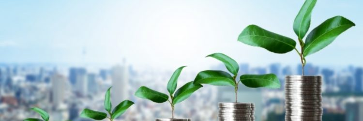 【失敗例あり】ひとり起業家の売上を上げるための資産の作り方